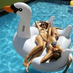 Giant Swan Pool Inflatable